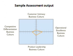 Protected: Canopus Business Culture Assessment Survey