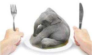 How to eat an elephant?